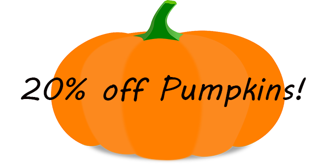 20% off Pumpkins